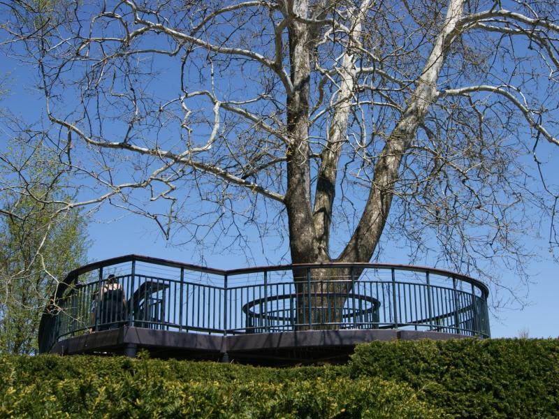 circular-platform-mazegarden